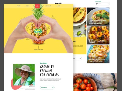 La Dona Fruit news recipes corporate fruit brand identity scroll animation header responsive design