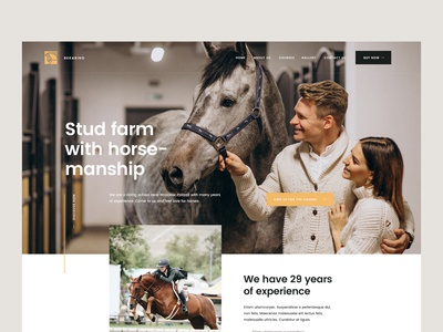 Stud farm with horse-manship — Website