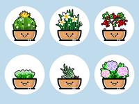 plants(05)