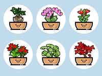 plants(07)