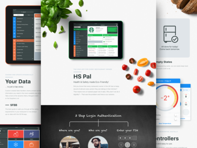 🍃 HSPal – Health & Safety App Case Study
