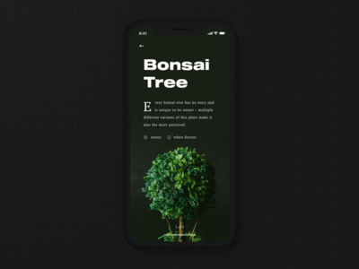 🍃 Plants: Intro Screen