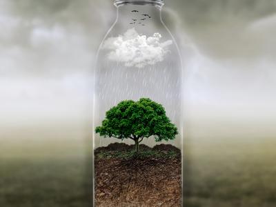 Bottle manipulations