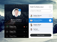 Add Collaborator - Modal (PSD)