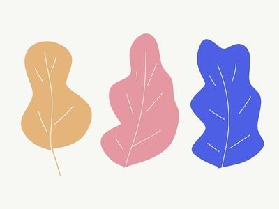 Leafs adobe draw nature illustration nature vector leaf illustration