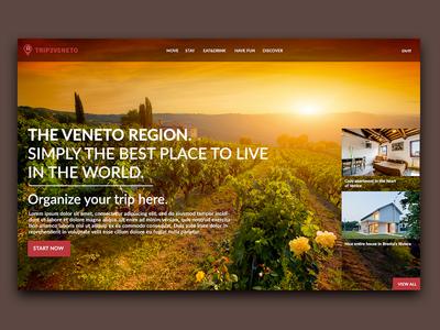 Trip2Veneto home concept