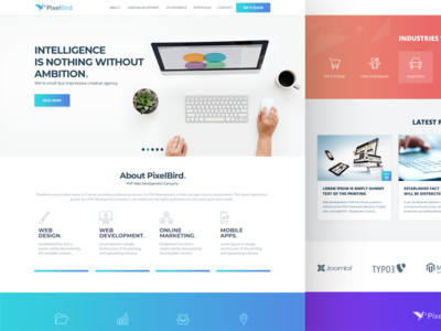 PixelBird Corporate Web Landing Page landing page website template creative company pixelbird interaction ui ux layout corporate homepage