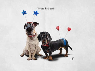 Whats The Deely? tail star heart deely bopper collar animal companion dog pet sausage dog dachshund pug