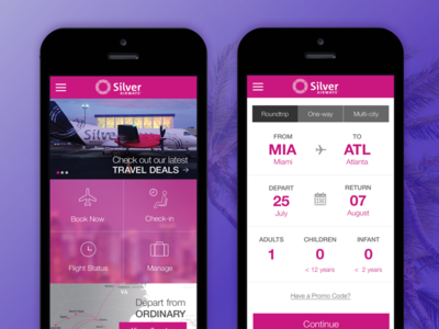 Silver Airways - Pitch Design