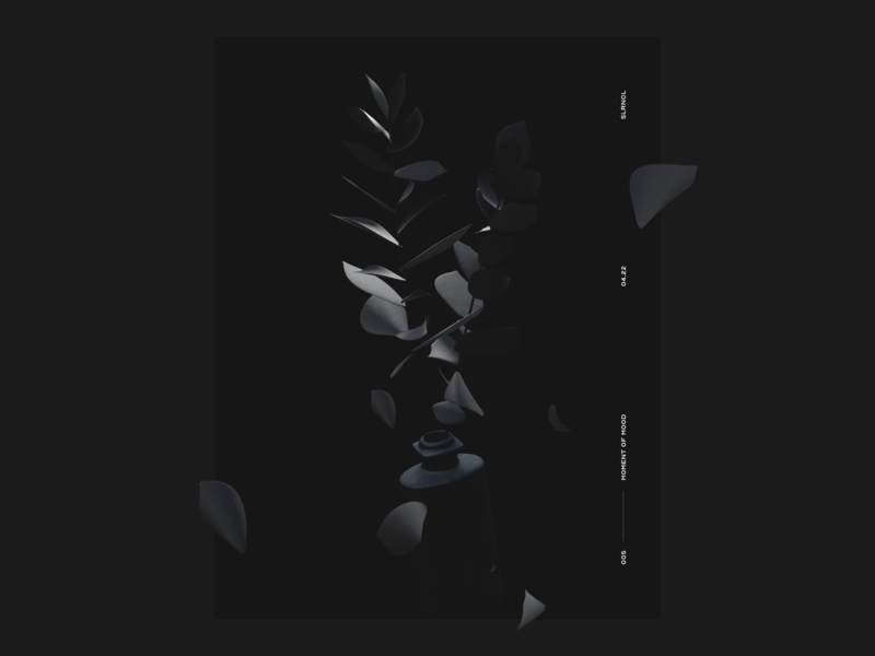 ⚫️🍃 poster low poly vectary c4d black plant 3d illustration
