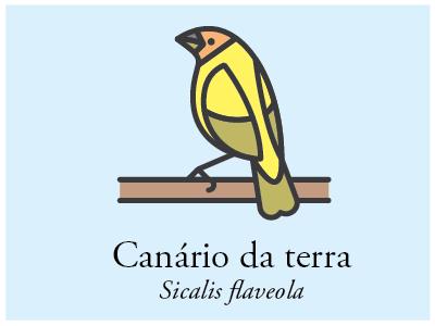 Canário-da-terra vector illustration bird brazil icon