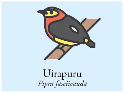 Uirapuru vector bird brazil illustration icon