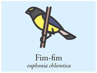 Fim-fim vector illustration brazil bird icon