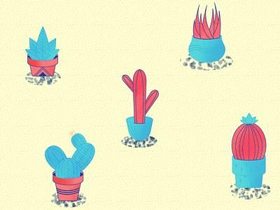 Cactus Fun pattern fun cactus plant art texture color design illustration
