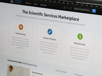 Homepage minimal web iconography homepage