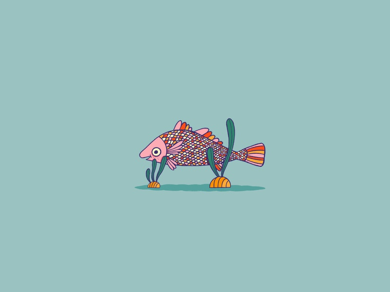 Drum Fish cute happy seaweed scales illustration water ocean inktober rainbow animal drum fish
