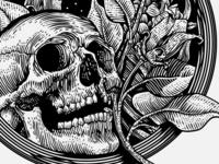 Q Skull