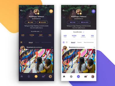 Dark and Light Theme Profile Screen