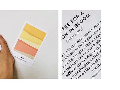 BBC Spring 2020 print layout branding color typography design