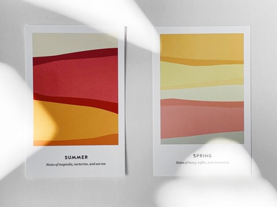 BBC SS20 branding illustration typography color