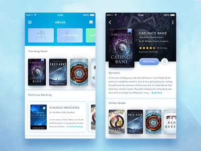 Conceptual eBook App UI read reading conceptual concept colorful cool library best shot reader ebooks collection trendy modern