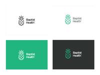Baptist logo concept color