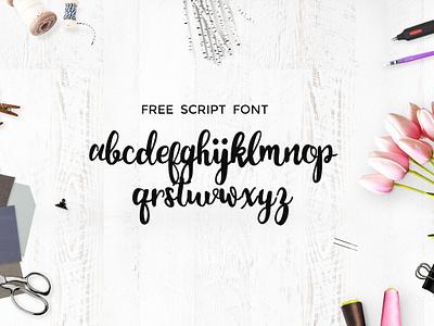 Monogram Script Font free freebie freebies graphic design portfolio download font fonts typeface typefaces