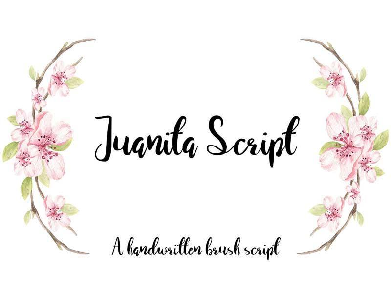 Juanita Brush Script Free Font
