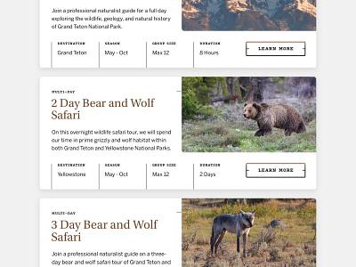 Jackson Hole Wildlife Safaris  —  4 𝑜𝑓 9 travel wildlife ui wolf bear web design website web yellowstone grand teton jackson hole clean grey natural wild wilderness expedition tour card