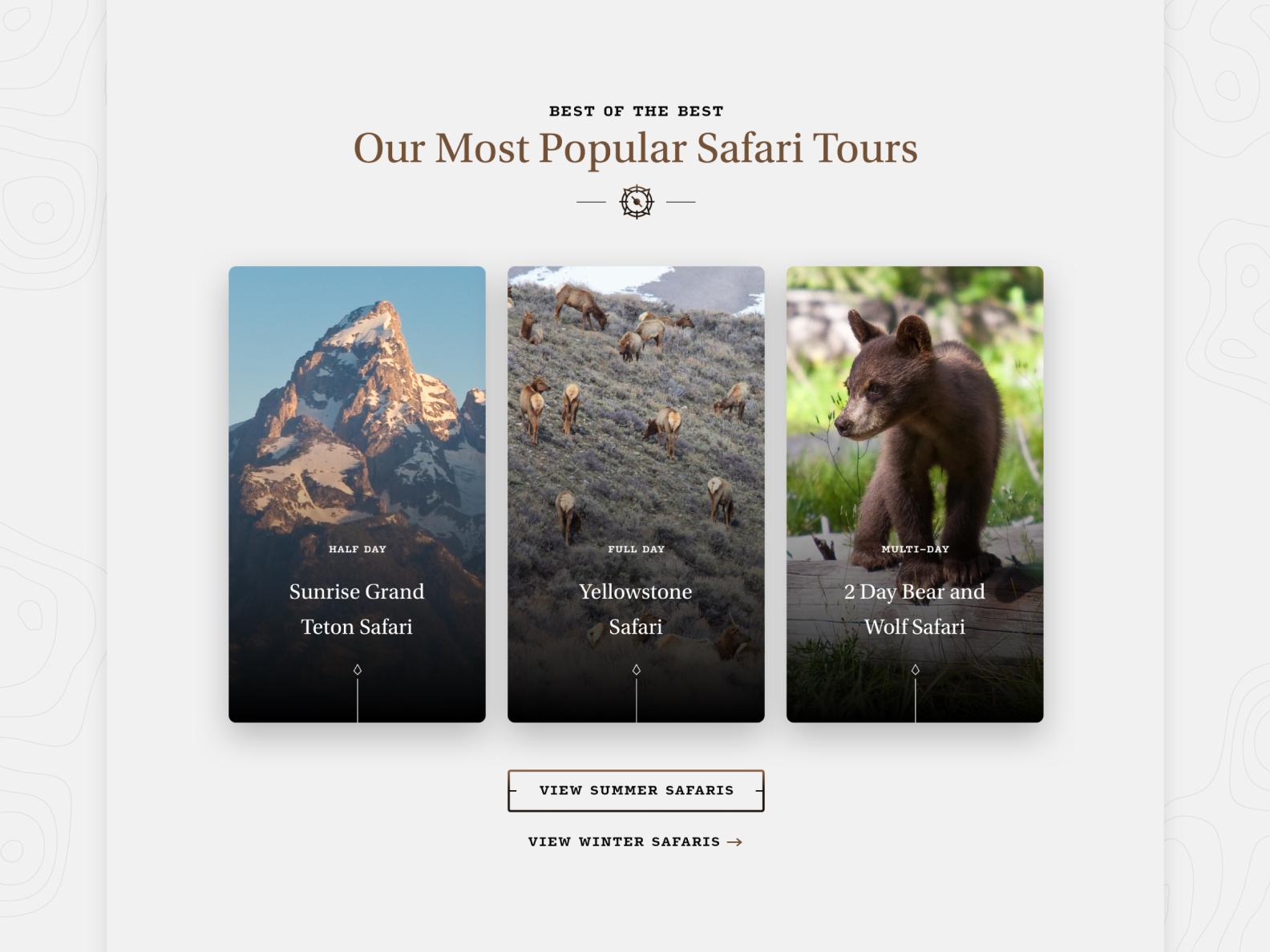 Jackson Hole Wildlife Safaris  —  2 𝑜𝑓 9