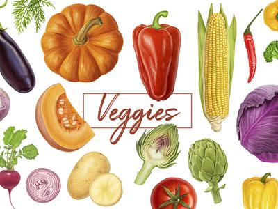 Veggies. Vector artwork.