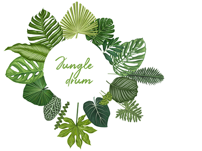 Jungle Drum, hand drawn vector illustration illustration watercolor vector ecology green animal tropical forest nature exotic banana pattern wallpaper summer beach palm tree monstera flower leaves jungle book