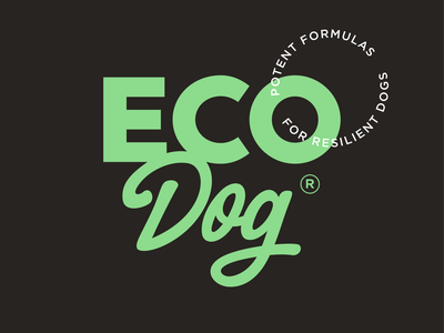 EcoDog Wordmark mark icon branding word wordmark vector logo symbol design typography