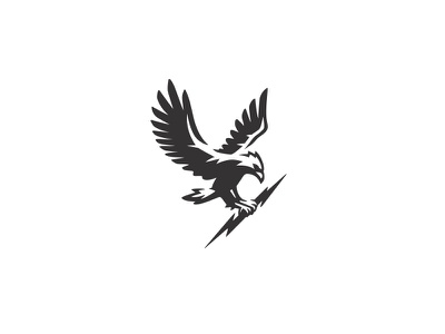 Eagle & Bolt bolt outdoors hiking negative space military airsoft apparel falcon hawk eagle bird logo