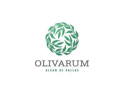 olive branch logo health medical feminine cosmetics illustration leaves plant branding logo product oil wreat olives
