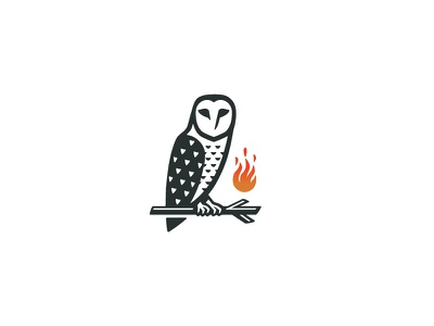 Wise Owl logo entertainment media modern education simple classic negative space illustration branding owl illustration animal mark owl logo mystery mysterious branch flame fire bird owl