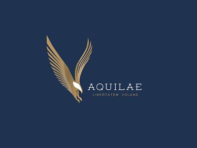 Luxurious eagle logo design gold golden hawk falcon eagle minimal bird simple classic negative space branding illustration animal mark logo