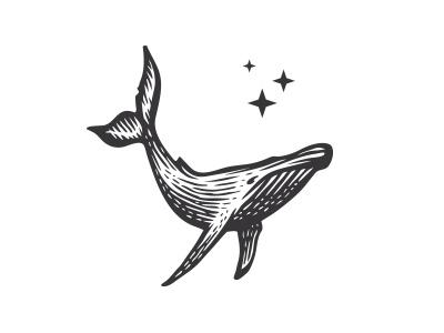 Whale logo etching scratchboard engraving illustration animal mark logo sea ocean whale humpback