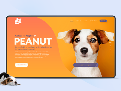 Soi Dog donate adoption dog design ux mobile logo branding ui