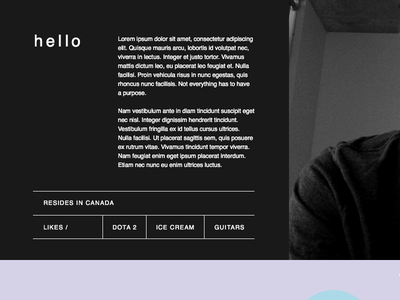 Colorzone 1 portfolio website web