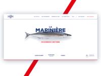 Fish shop landing page