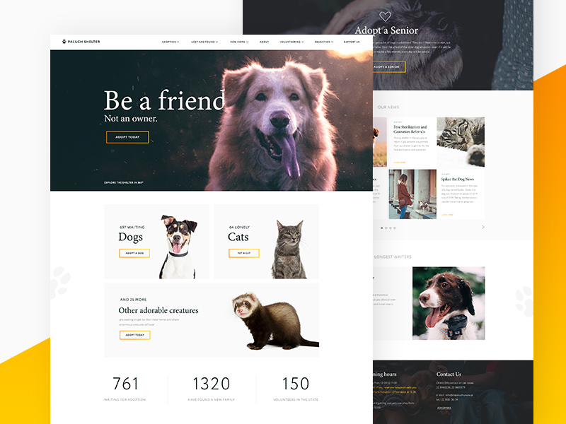 Shelter Redesign animals pets shelter redesign ui design webdesign fireart studio fireart