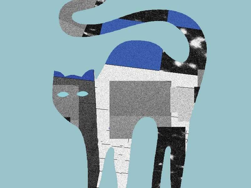 Astrocat texture structure cat space pattern illustration 3d