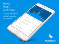 Pulse Bank