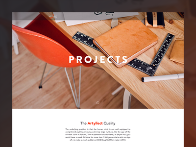 Project Overview page projects ui ux agency web photography case studies