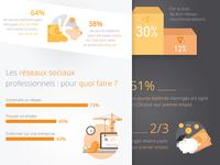 Infography Viadeo