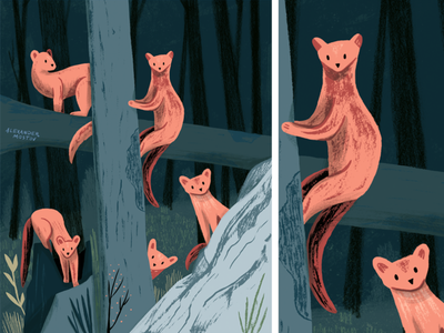 Pine Martin Squad art painting editorial plants texture animals picturebook kidlit drawing animal illustration forest cute animal illustration