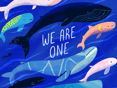 We Are One ocean life ocean whales design kidlit art animals drawing editorial whale illustration
