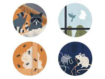 AAA Home Insurance Threats magazine pastel circle animals icon company insurance illustration editorial