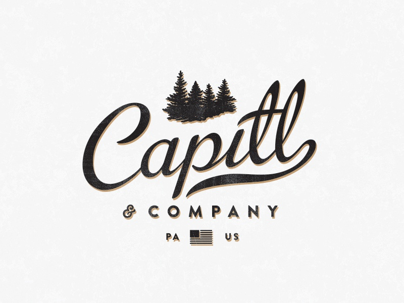 Capitl co newlogo